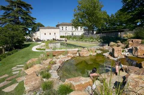 Sans produits chimiques, cette piscine est purifiée grâce aux plantes.