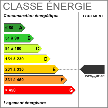 Diagnostic de Performance Énergétique : E